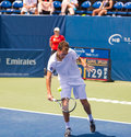 Jerzy janowicz plays center court at the winston salem open Stock Photography