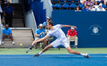 Jerzy janowicz plays center court at the winston salem open Royalty Free Stock Images
