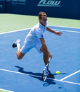 Jerzy janowicz plays center court at the winston salem open Stock Image