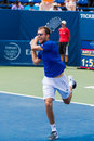 Jerzy janowicz plays center court at the winston salem open during a loss to lukas rosol in sets Royalty Free Stock Photo