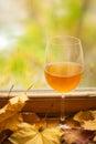 Jesieni biały wino Fotografia Royalty Free