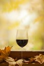 Jesieni czerwone wino Zdjęcie Royalty Free