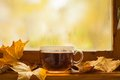 Jesieni herbata Fotografia Royalty Free