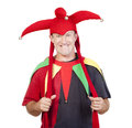 Jester Royalty Free Stock Photography