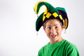 Jester in Green Royalty Free Stock Image