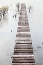 Jetty in the mangrove lake Royalty Free Stock Images
