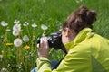 Jeune femme dans le temps libre faisant des photos de nature dans l herbe Image libre de droits