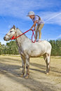 Jeune fille restant sur un poney Photos stock
