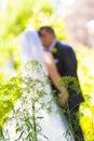 Jeunes mariés wedding day Photographie stock libre de droits