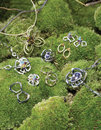 Jewelery on green foliage Royalty Free Stock Photos