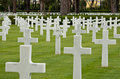 A Jewish cross at American war cemetery Stock Photography