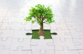 Jigsaw puzzle tree small growing from grass inside a Royalty Free Stock Images