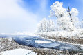 Jilin Rime Royalty Free Stock Photo