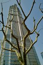 Jin Mao Tower Stock Photo