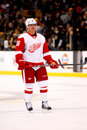 Jiri hudler detroit red wings Fotografia de Stock Royalty Free
