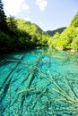 Jiuzhaigou china lake in national park Stock Photography