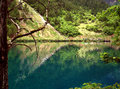 Jiuzhaigou s natural scenery is very beautiful especially the water color beautiful clear bottom no pollution to the environment Royalty Free Stock Photos
