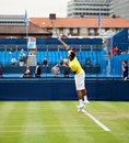 Jo wilfred tsonga at queens tournement Royalty Free Stock Images