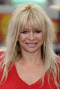 Jo Wood Royalty Free Stock Images
