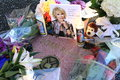 Joan rivers star flowers placed on Stock Images