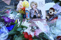 Joan rivers star flowers placed on Stock Photos