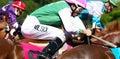 Jockeys at full gallop Royalty Free Stock Photo