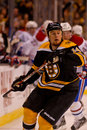 Joe Corvo Boston Bruins defenseman Royalty Free Stock Photos