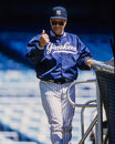 Joe torre new york yankees Images stock