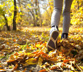 Jogging in the autumn forest running through Royalty Free Stock Photo