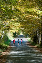 Jogging down a country road in fall Stock Photos