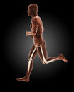 Jogging male medical skeleton d render of a running Stock Photos