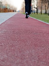 Jogging on running track a person is in blue tracksuits and trainers a red rubber covered Royalty Free Stock Image