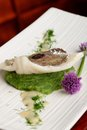 John dory fish fillet on spinach fine gourmet dining puree Royalty Free Stock Photo