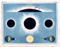 1855 Johnston Total Solar Eclipse Diagram showing solar flares and the sun`s aurora