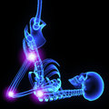 Joints a need for strength makes the bones rigid but if the skeleton consisted of only one solid bone movement would be impossible Royalty Free Stock Photo