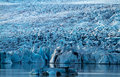 Jokulsarlon blue ice at icelake Stock Photos