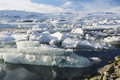 Jokulsarlon outlet icebergs crammed in the of glacial lagoon with breidamerkurjokull glacier behind on a sunny winter s afternoon Royalty Free Stock Photos