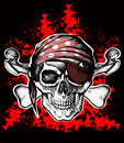 Jolly Roger Pirate Symbol With...
