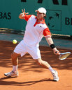 Jonathan DASNIERES DE VEIGY (FRA) at French Open Royalty Free Stock Images