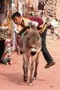Jonge Bedouin jongen die op zijn ezel beklimt Stock Foto