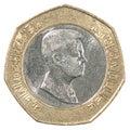 Jordanian dinar coin Royalty Free Stock Photo