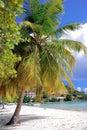 Jost Van Dyck British Virgin Islands Royalty Free Stock Photo