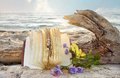 Journal and roses in beach sand Royalty Free Stock Photo