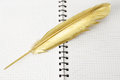 Journalism gold quill pen of on a diary Royalty Free Stock Image