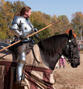Jousting Champion Shane Adams Stock Photos