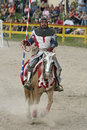 Jousting Knight Royalty Free Stock Photos