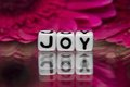 Joy text with flowers pink in the background Royalty Free Stock Photo