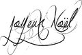 Joyeux noel sign french words for happy christmas in decorative handwriting on a white background Royalty Free Stock Photography