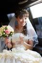 Joyful bride into limo Royalty Free Stock Photo