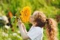 Joyful child smell sunflower enjoying nature in summer sunny day Royalty Free Stock Photo